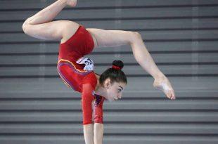 Campionatele Europene reprogramate în luna decembrie 2